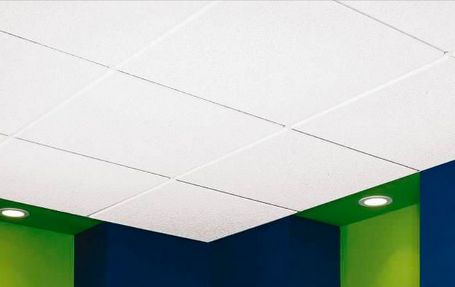 Hygienic Durable 3D Plastic Ceiling Panels 105 Figra With High Shrink Surface
