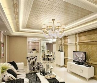 China Shops Decorative Suspended Ceiling Tiles With Aluminum Alloy 1100 Material distributor